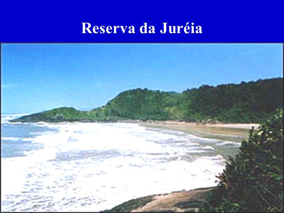 Reserva da Juréia