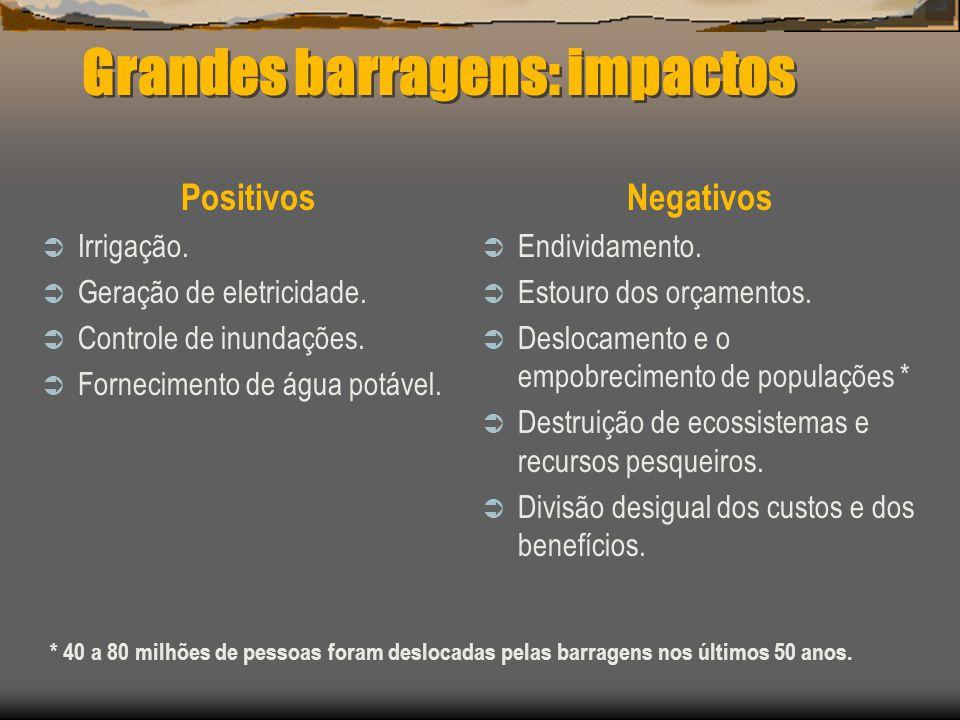 Grandes barragens: impactos