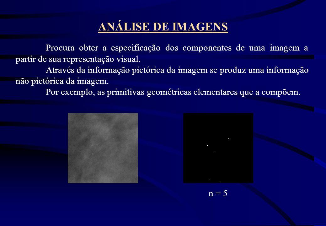 ANÁLISE DE IMAGENS Procura obter a especificação dos componentes de uma imagem a partir de sua representação visual.