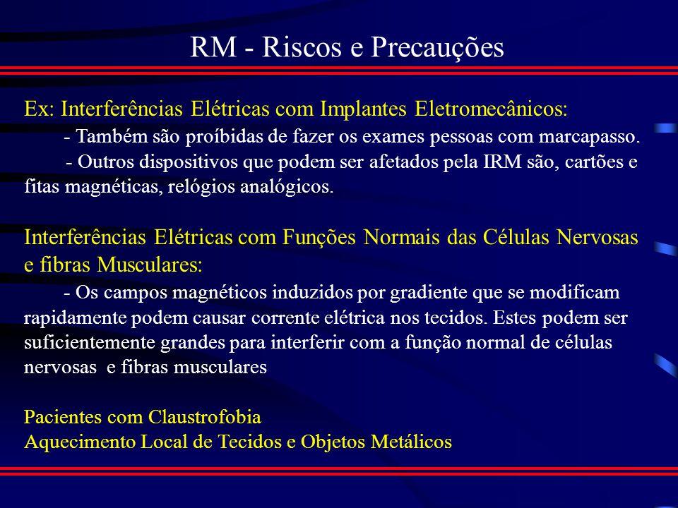 RM - Riscos e Precauções