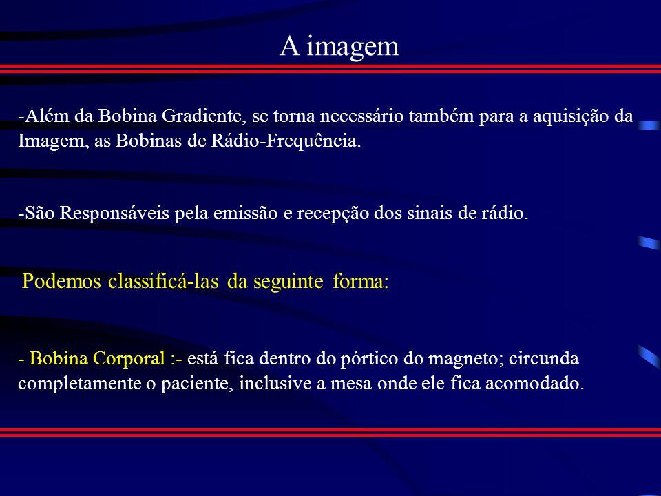 A imagem -Além da Bobina Gradiente, se torna necessário também para a aquisição da Imagem, as Bobinas de Rádio-Frequência.