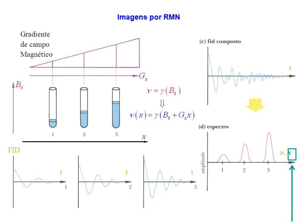 Imagens por RMN t n, x Gradiente de campo Magnético t FID t FID