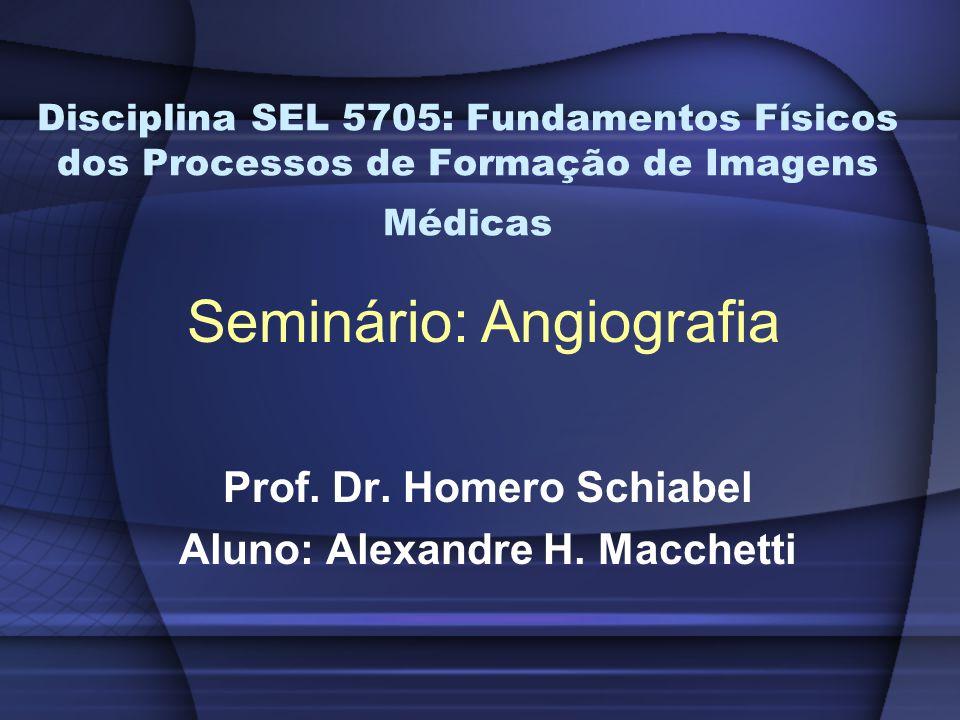 Prof. Dr. Homero Schiabel Aluno: Alexandre H. Macchetti