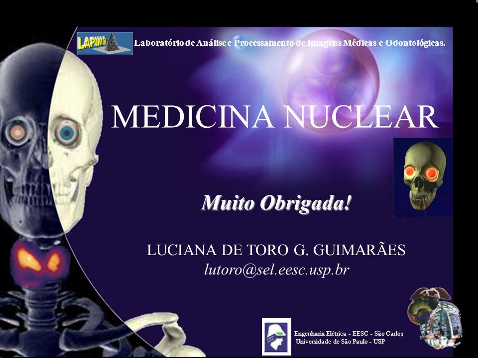 LUCIANA DE TORO G. GUIMARÃES