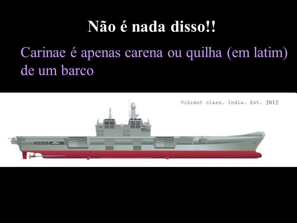 Não é nada disso!! Carinae é apenas carena ou quilha (em latim) de um barco.