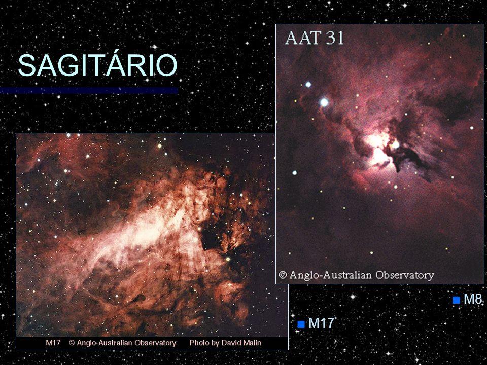 SAGITÁRIO M8 M17