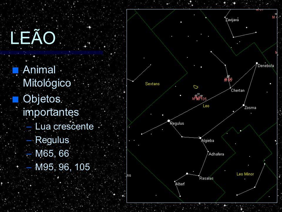 LEÃO Animal Mitológico Objetos importantes Lua crescente Regulus