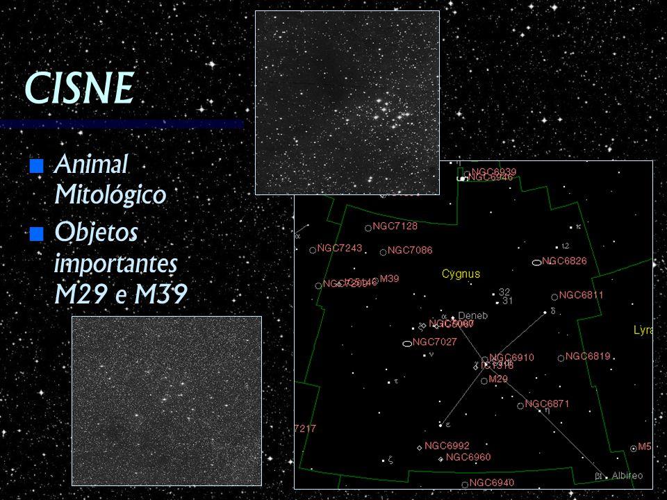CISNE Animal Mitológico Objetos importantes M29 e M39