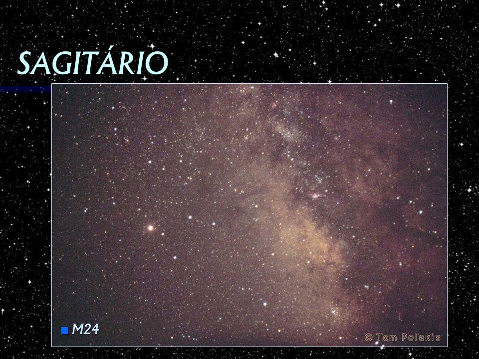 SAGITÁRIO M24