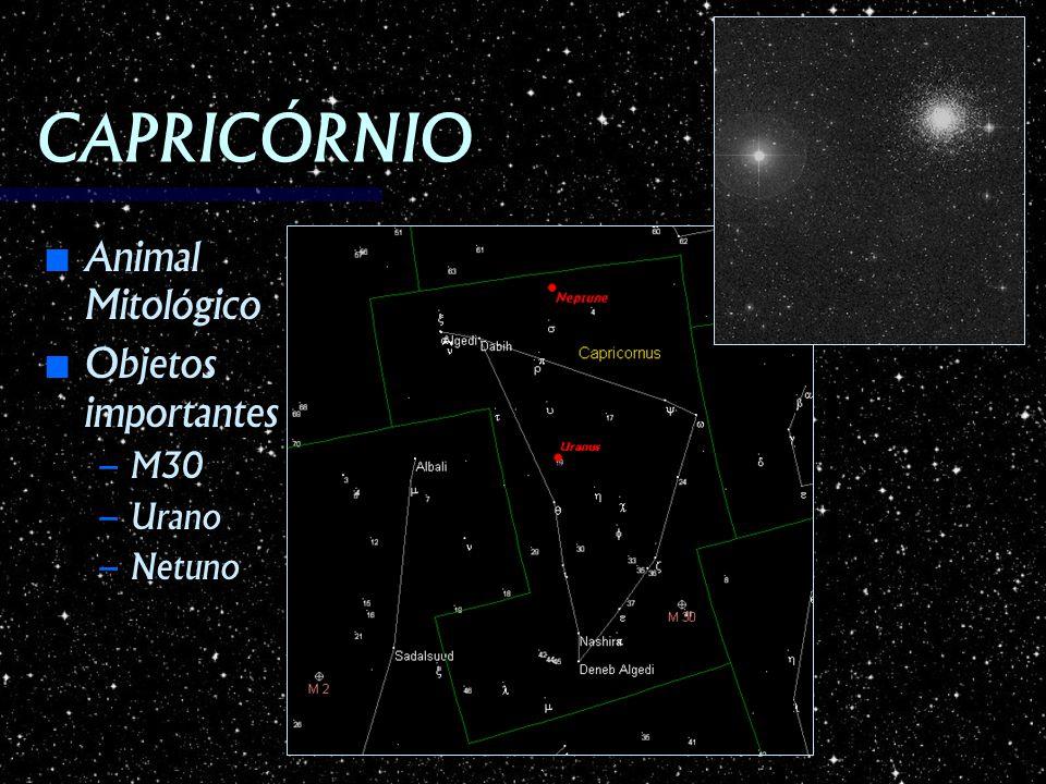 CAPRICÓRNIO Animal Mitológico Objetos importantes M30 Urano Netuno