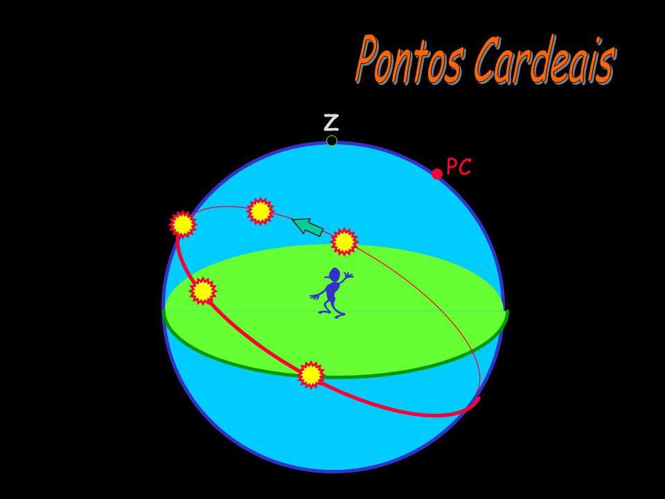 Pontos Cardeais Z PC