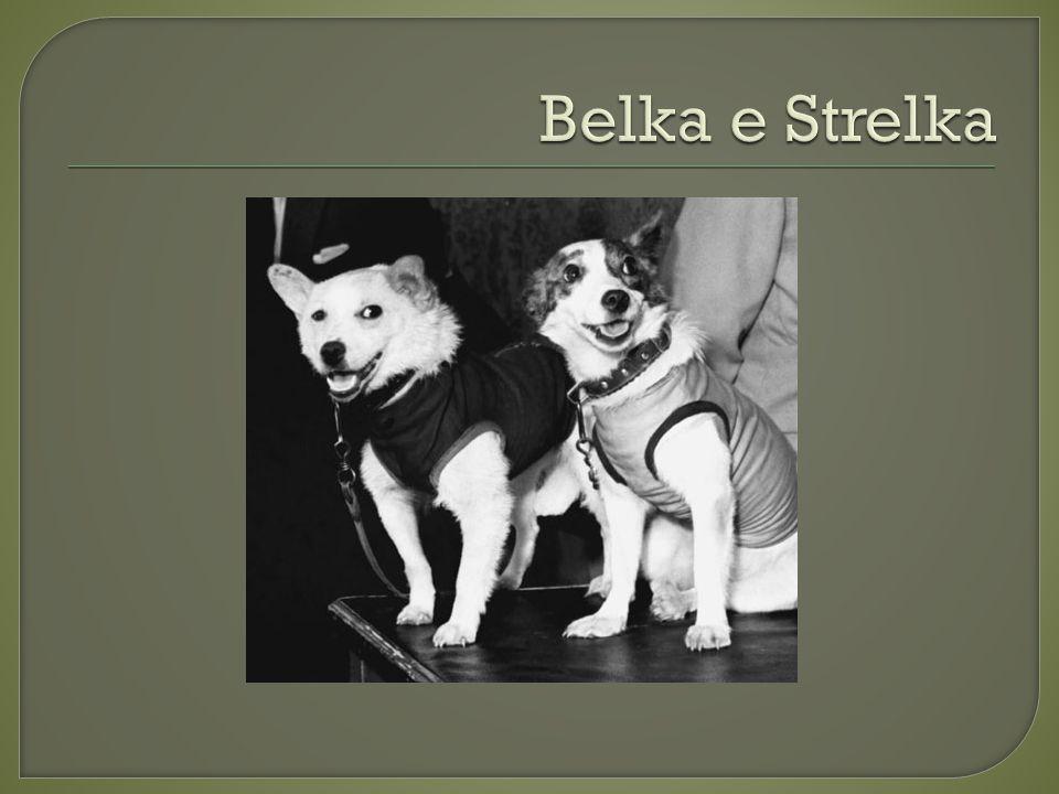 Belka e Strelka