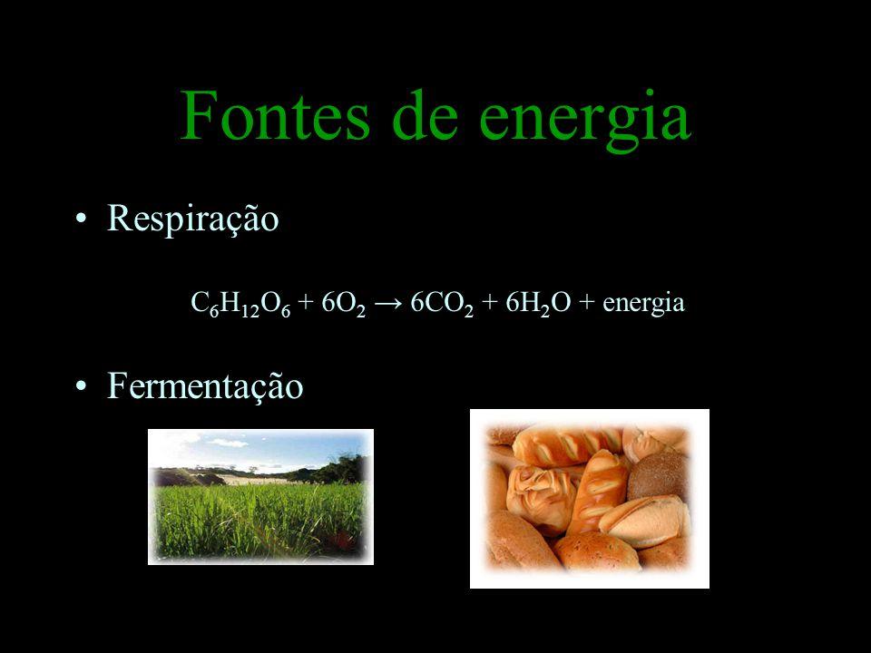 Fontes de energia Respiração Fermentação
