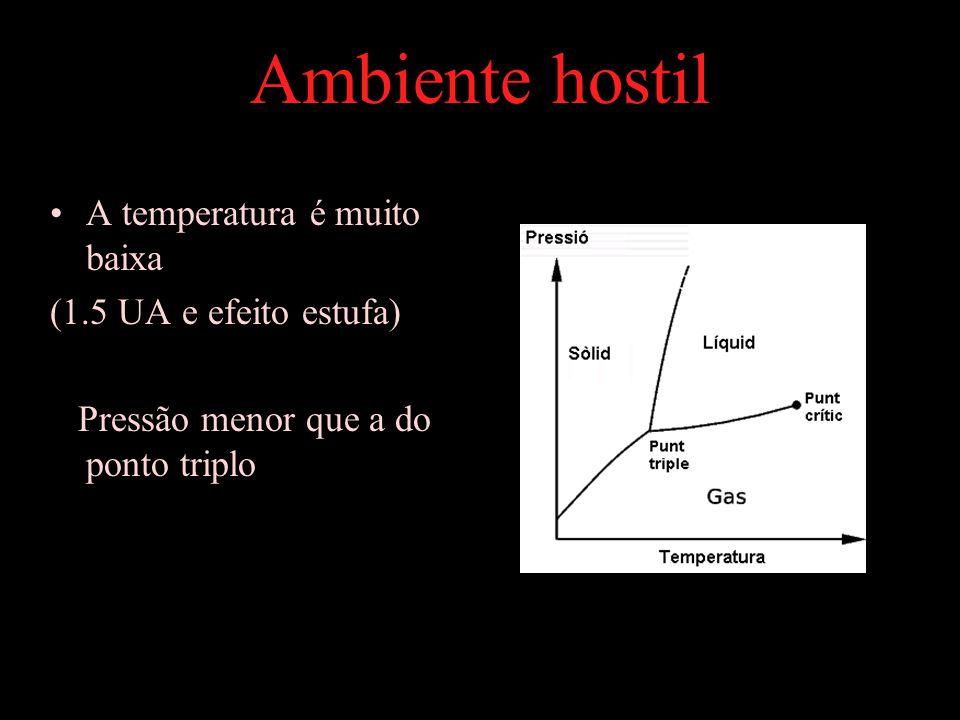 Ambiente hostil A temperatura é muito baixa (1.5 UA e efeito estufa)