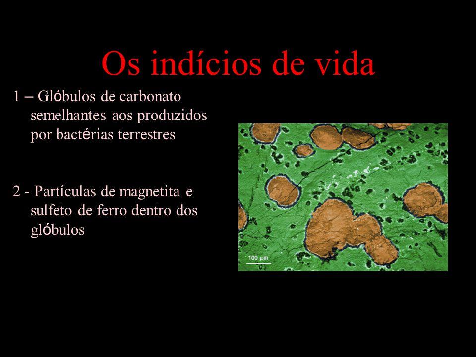 Os indícios de vida 1 – Glóbulos de carbonato semelhantes aos produzidos por bactérias terrestres.