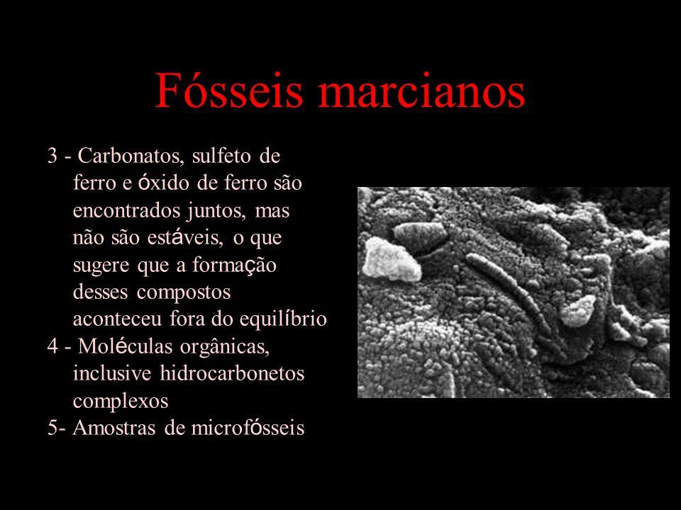 Fósseis marcianos