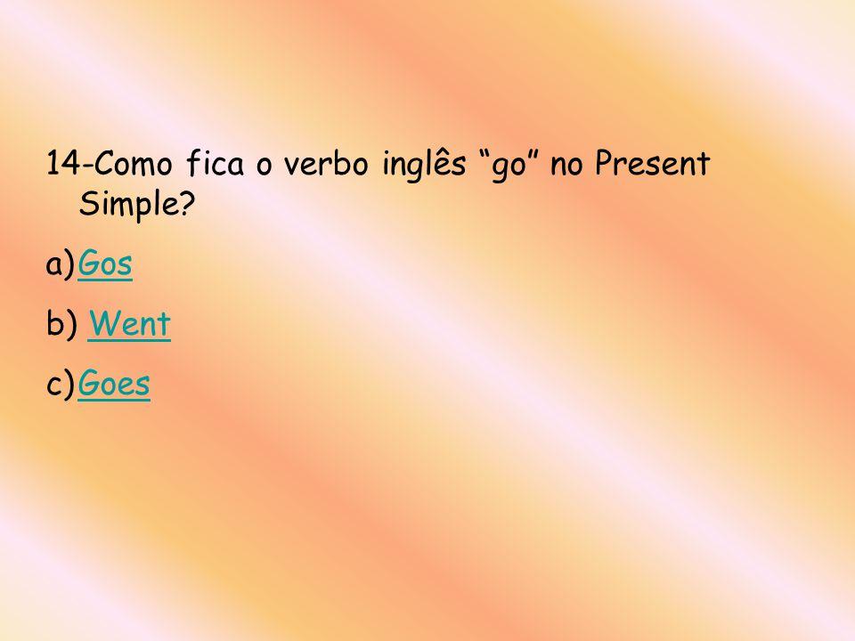 14-Como fica o verbo inglês go no Present Simple