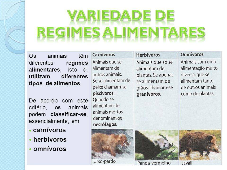 Variedade de Regimes Alimentares