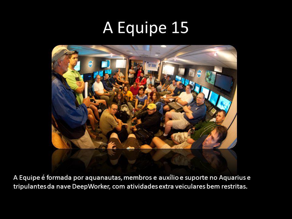 A Equipe 15