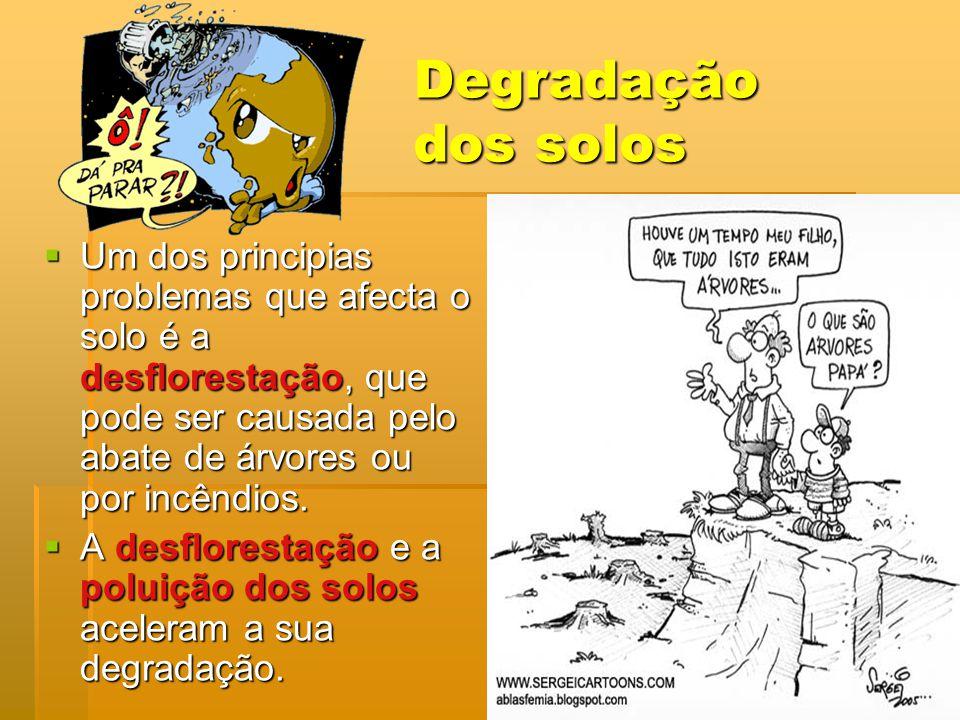 Degradação dos solos Um dos principias problemas que afecta o solo é a desflorestação, que pode ser causada pelo abate de árvores ou por incêndios.