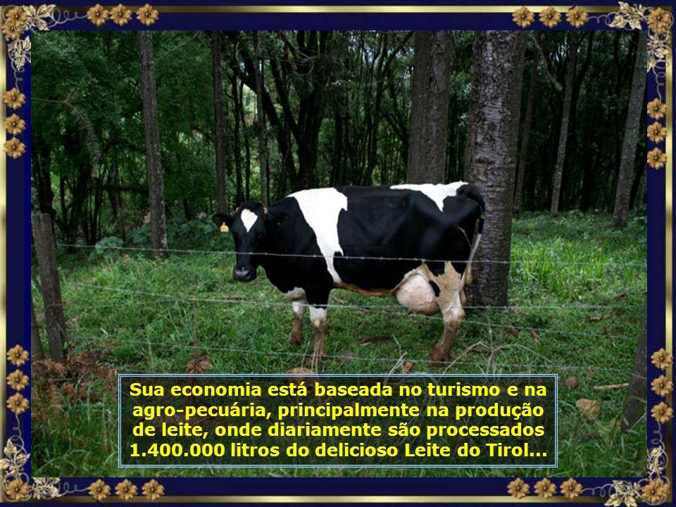 IMG_6445 - TREZE TÍLIAS - VACA LEITEIRA-700.jpg