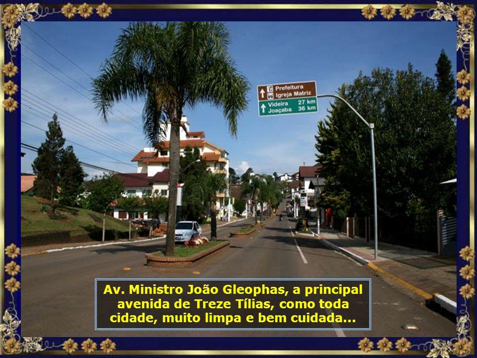 IMG_6358 - TREZE TÍLIAS - PRINCIPAL AVENIDA-700.