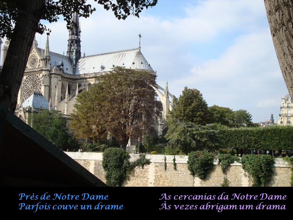 Près de Notre Dame Parfois couve un drame As cercanias da Notre Dame Às vezes abrigam um drama