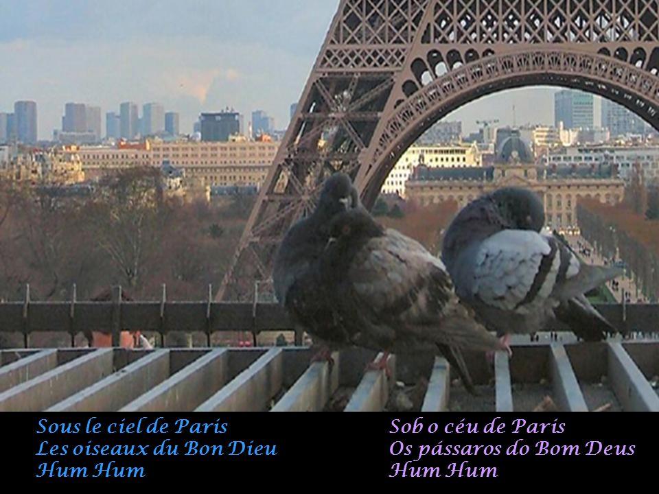 Sous le ciel de Paris Les oiseaux du Bon Dieu. Hum Hum. Sob o céu de Paris. Os pássaros do Bom Deus.