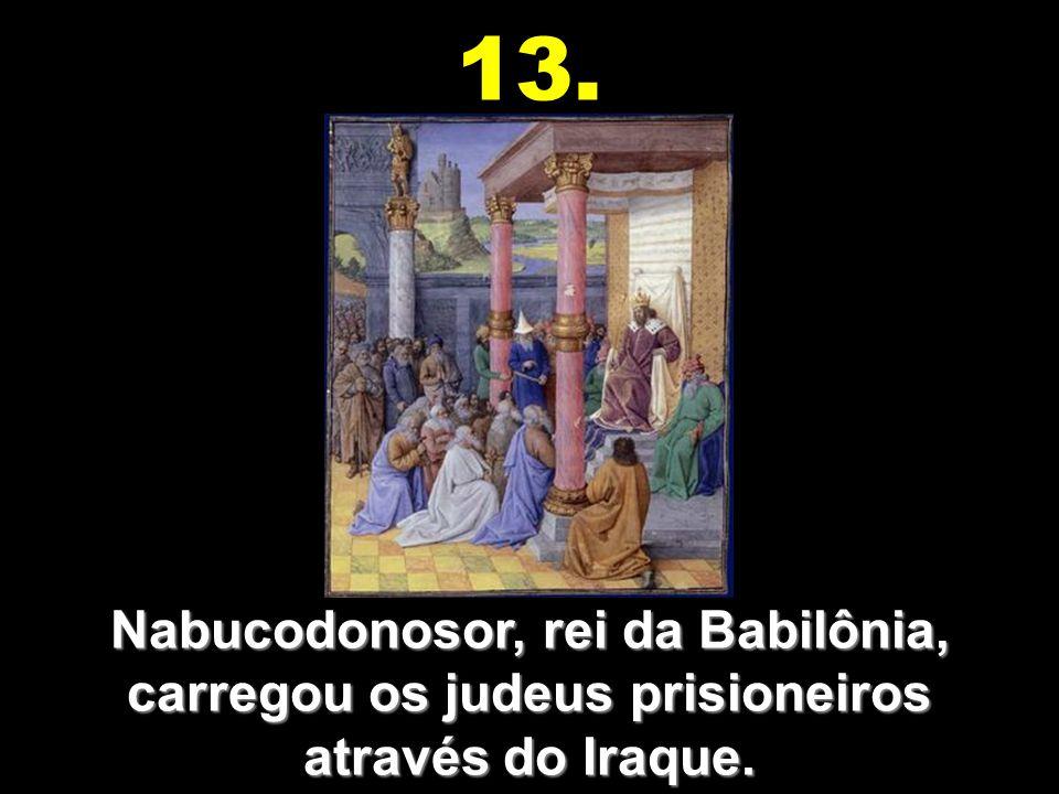 13. Nabucodonosor, rei da Babilônia, carregou os judeus prisioneiros através do Iraque.