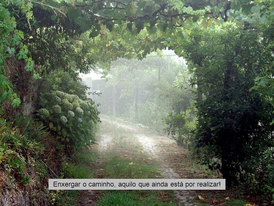 Enxergar o caminho, aquilo que ainda está por realizar!