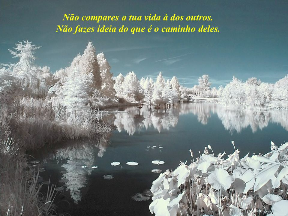 Não compares a tua vida à dos outros.