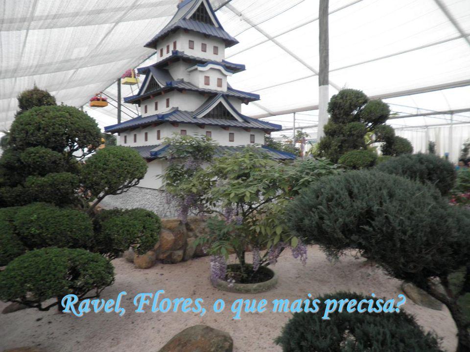 Ravel, Flores, o que mais precisa