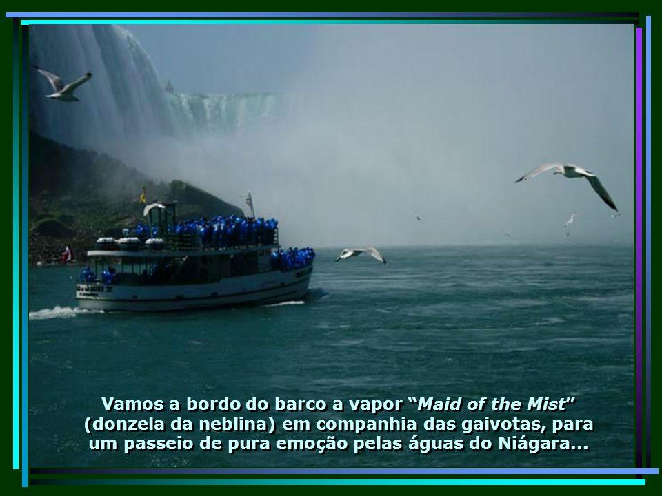 IMG_0088 - CANADÁ - NIÁGARA FALLS-680