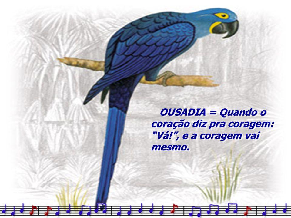 OUSADIA = Quando o coração diz pra coragem: Vá