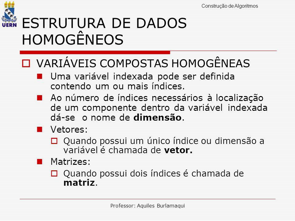 ESTRUTURA DE DADOS HOMOGÊNEOS