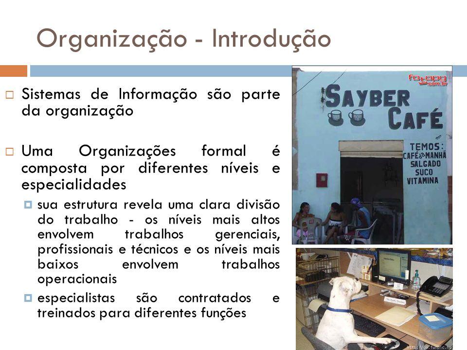 Organização - Introdução