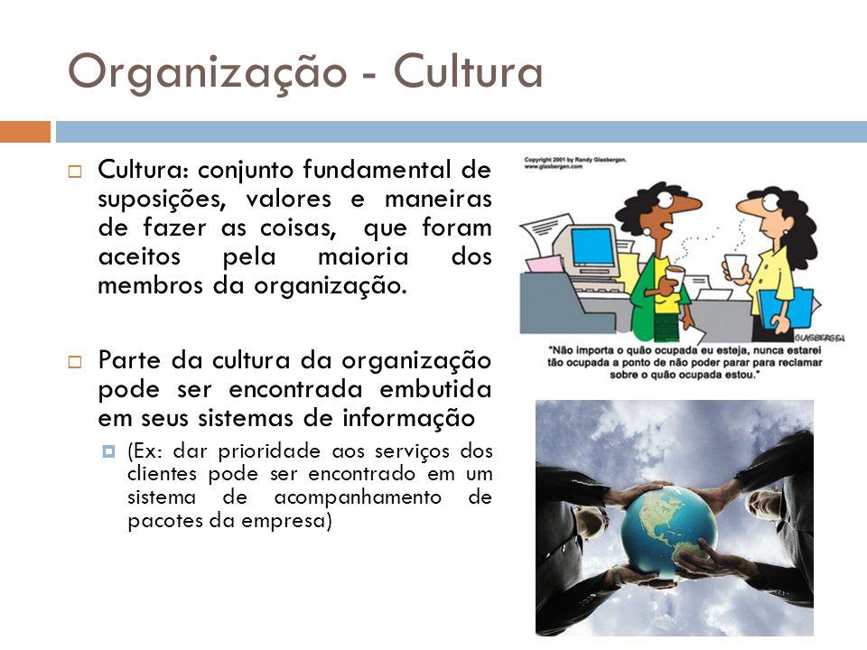 Organização - Cultura
