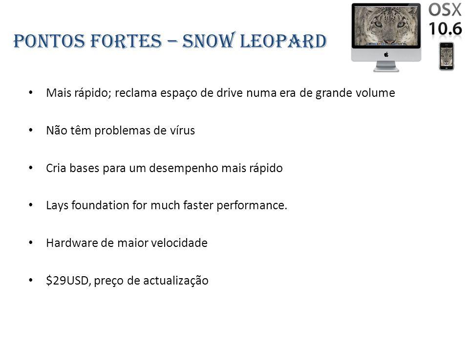 Pontos fortes – snow leopard