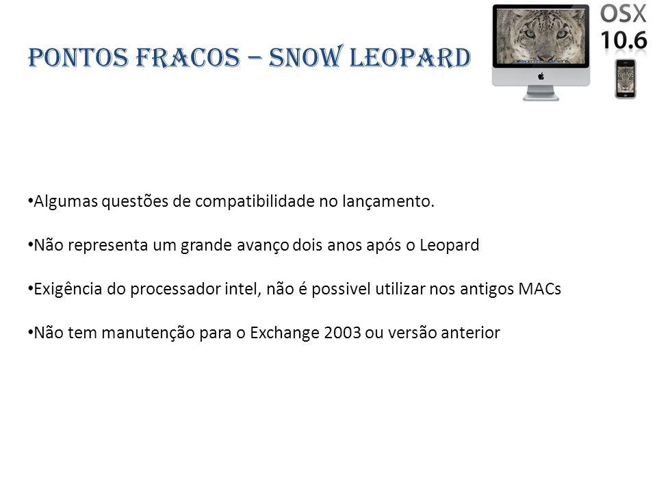 Pontos fracos – snow leopard