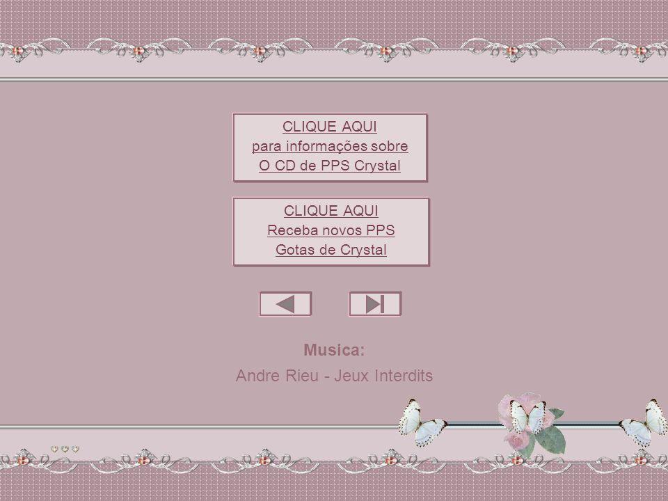 Andre Rieu - Jeux Interdits