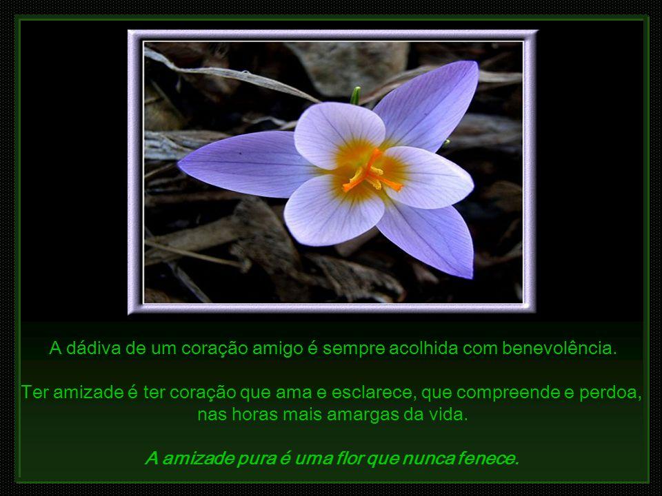 A dádiva de um coração amigo é sempre acolhida com benevolência