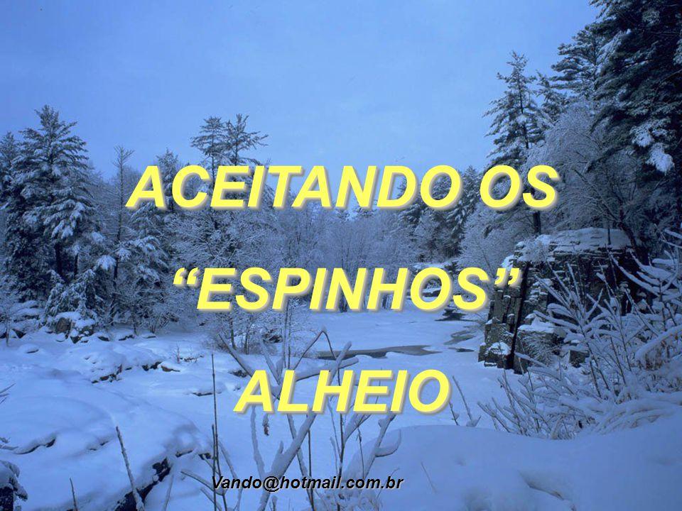 ACEITANDO OS ESPINHOS ALHEIO