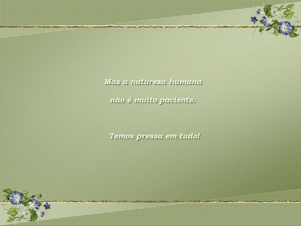 Mas a natureza humana não é muito paciente. Temos pressa em tudo!
