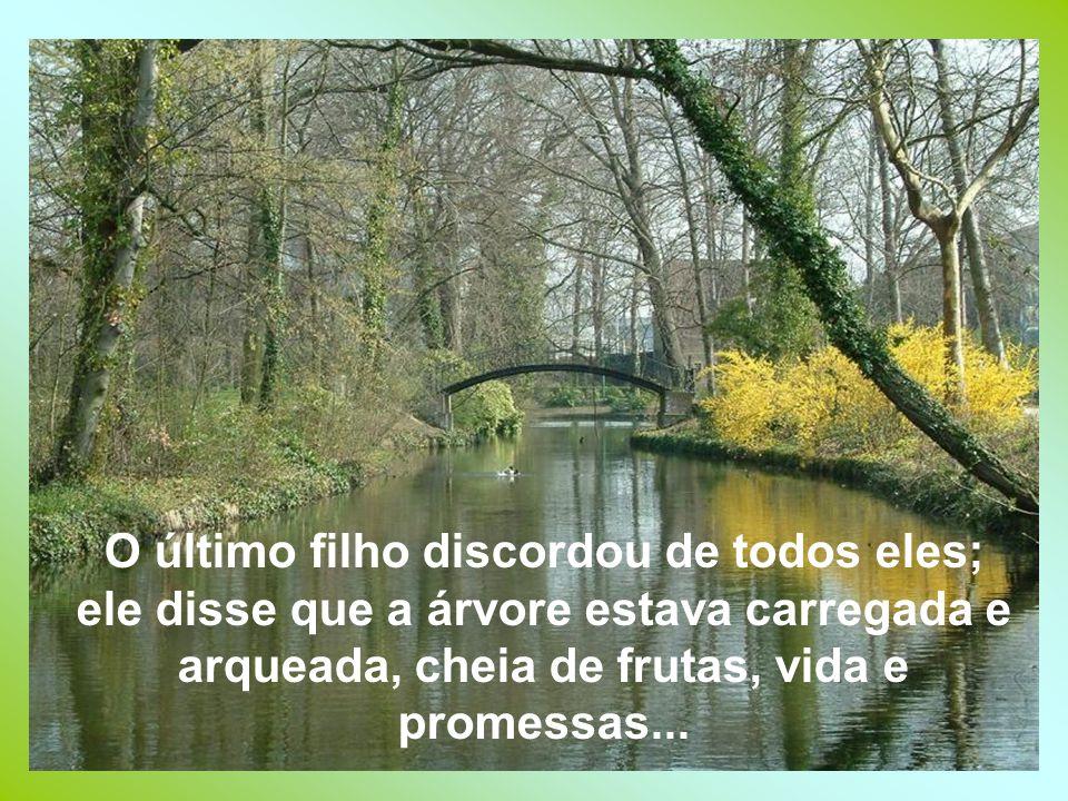 O último filho discordou de todos eles; ele disse que a árvore estava carregada e arqueada, cheia de frutas, vida e promessas...