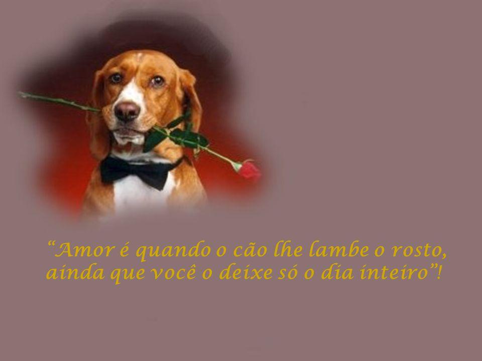 Amor é quando o cão lhe lambe o rosto, ainda que você o deixe só o dia inteiro !