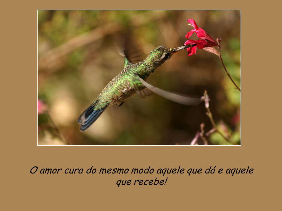 O amor cura do mesmo modo aquele que dá e aquele que recebe!
