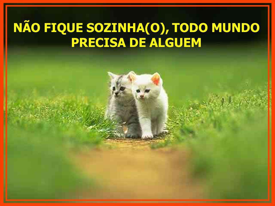 NÃO FIQUE SOZINHA(O), TODO MUNDO PRECISA DE ALGUEM