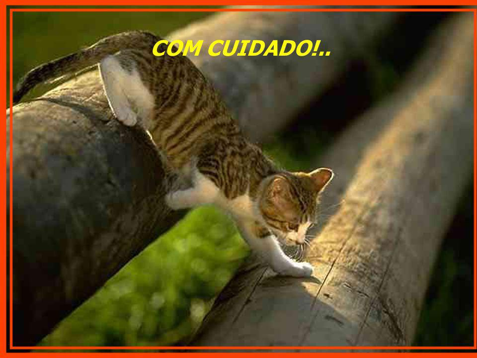COM CUIDADO!..