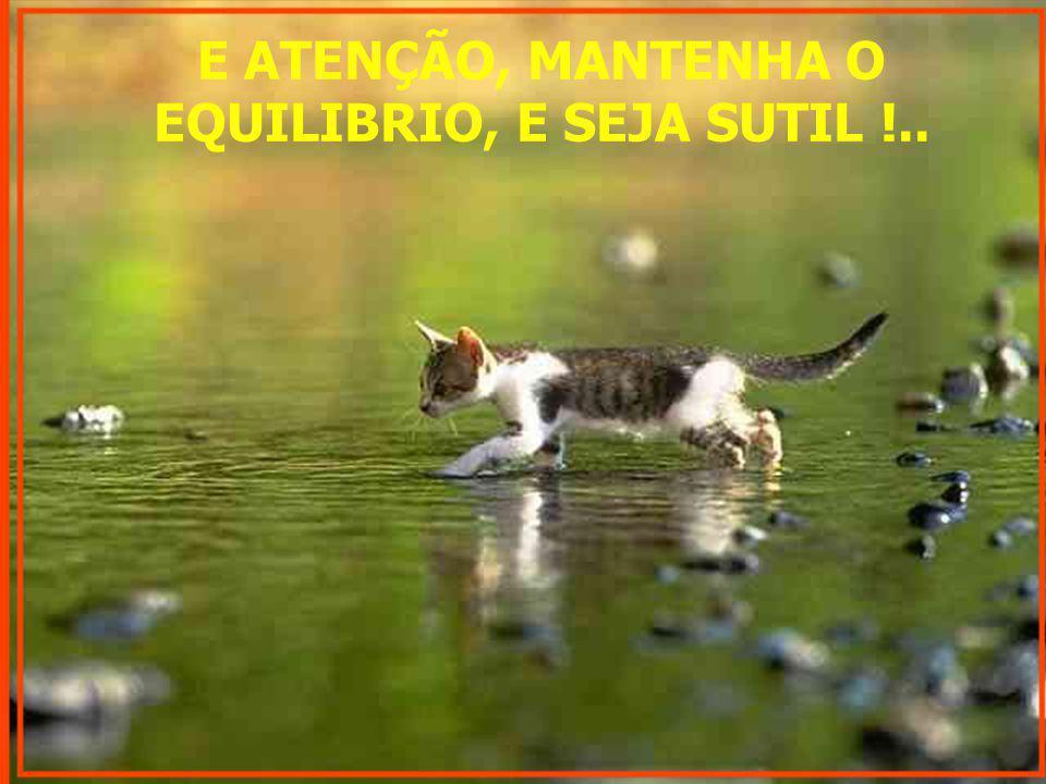 E ATENÇÃO, MANTENHA O EQUILIBRIO, E SEJA SUTIL !..