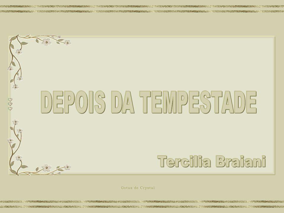 DEPOIS DA TEMPESTADE Tercilia Braiani